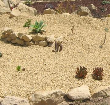 eco-jardin-ecollavor