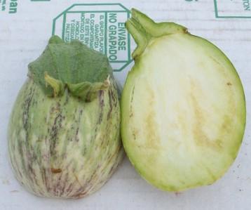 berenjena-listada-verde
