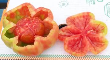 tomate-montserrat-cataluna2