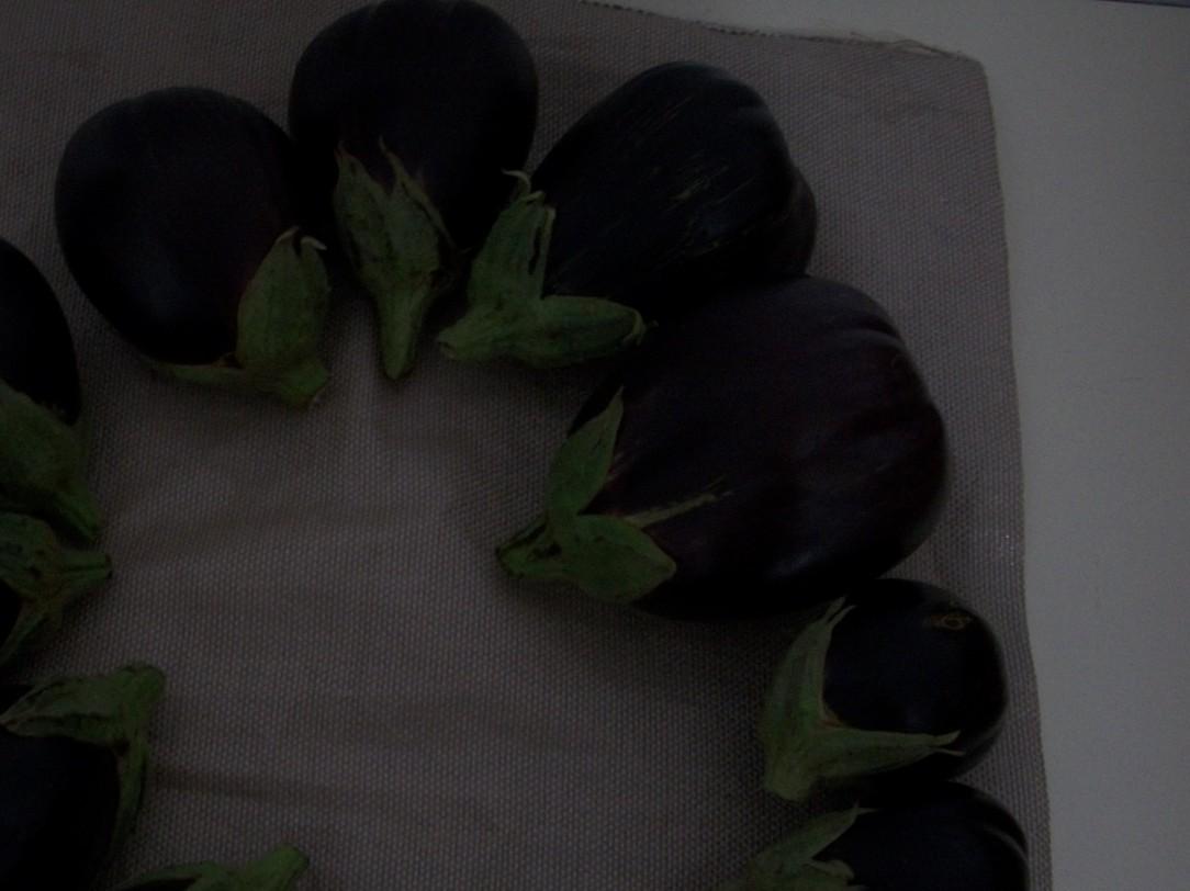 berenjena-de-florencia-negra-redonda-3