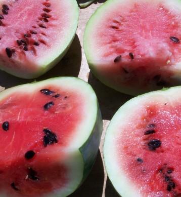 sandia-calabaza-papaya-3
