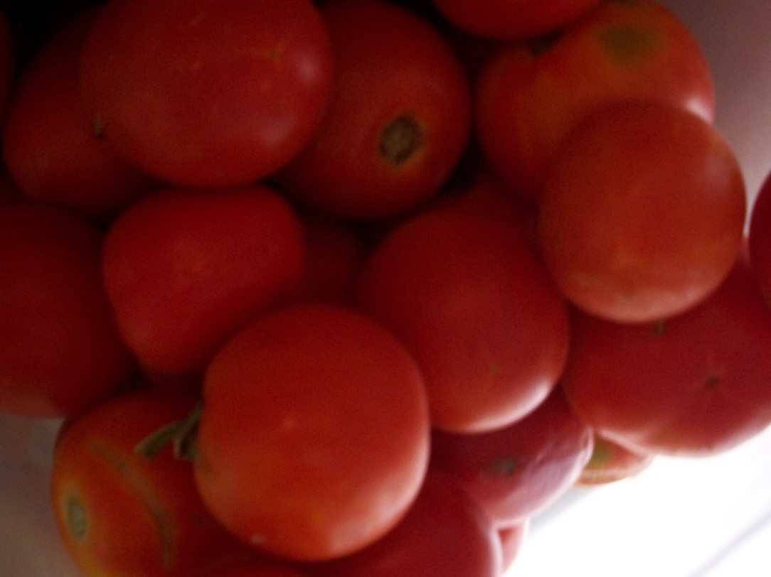 tomate-pera-444