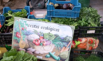 mercadillo-ecologico-alicante-100_3499
