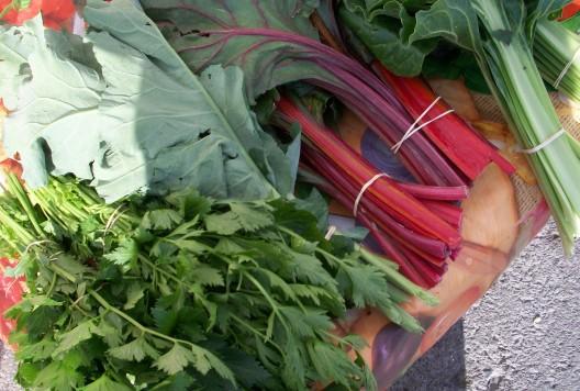 verduras-ecologicas-invierno-bacarot-alicante-100_3865