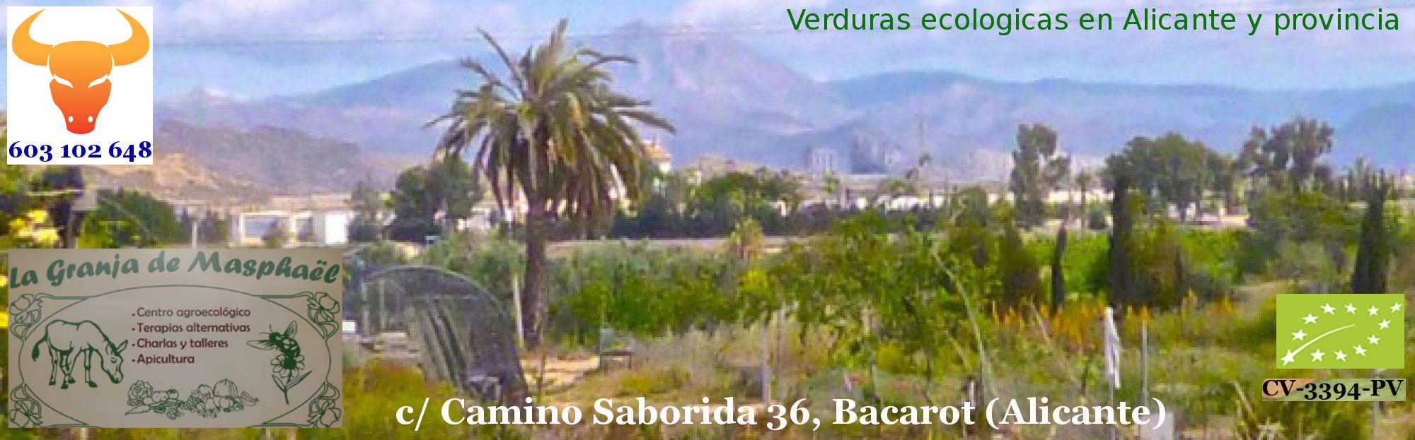 Verduras ecologicas en Alicante. VERDURAX.com